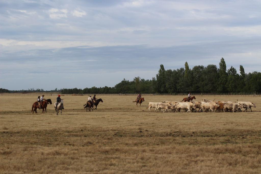 marais communaux